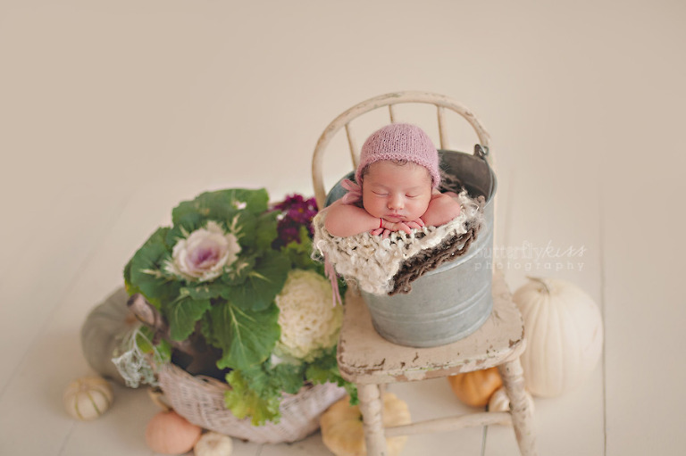 Organic newborn baby photo with pumpkins,  Peter Rabbit theme
