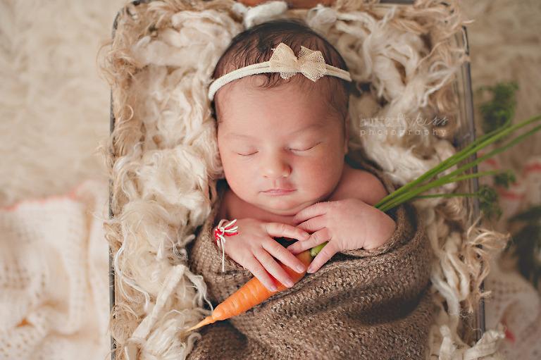 organic newborn baby photo with carrot, Peter Rabbit theme
