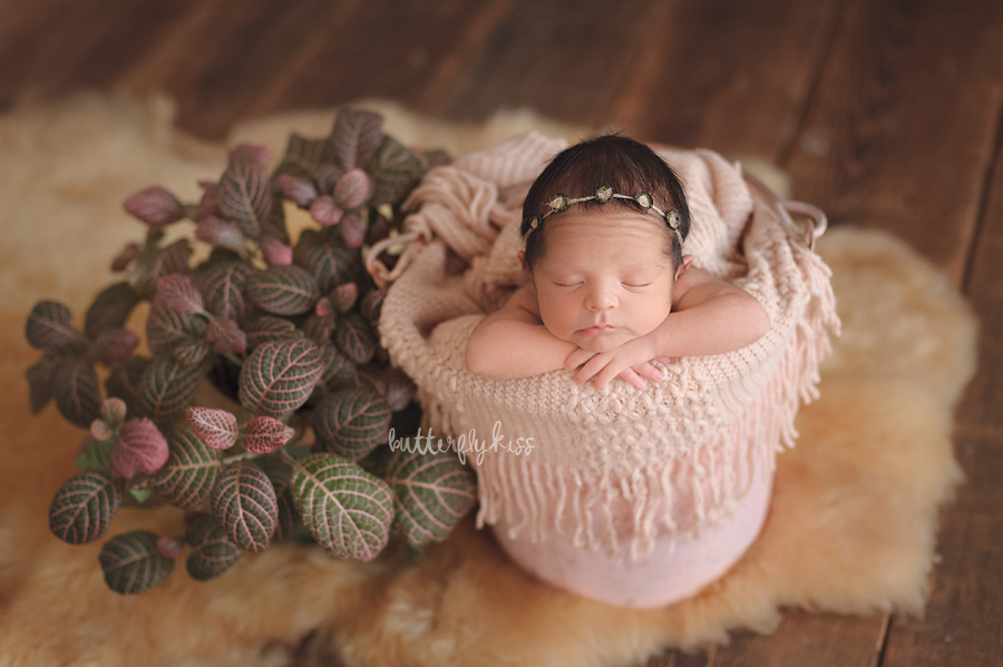 Tacoma newborn photographer native american baby session nature plant pink baby in bucket fur barnwood