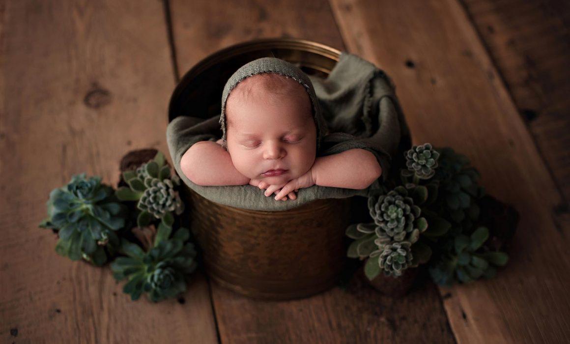 newborn photographer puyallup washington